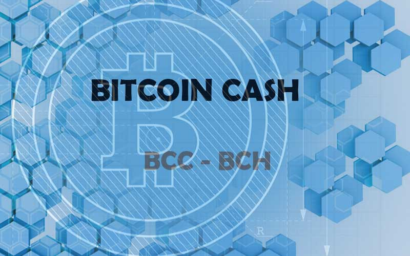 Картинки по запросу bitcoin cash